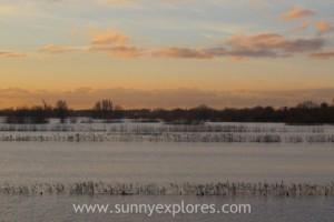 Sunnyexplores Munnikenland 4