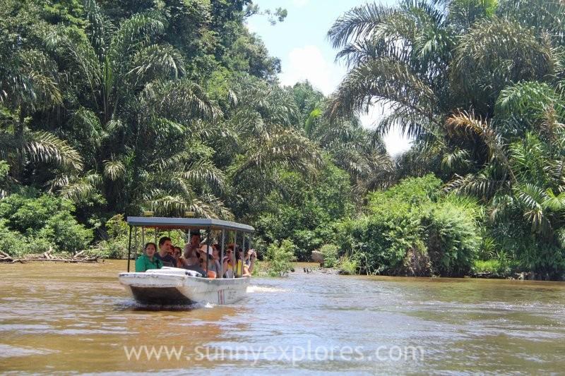 Visiting Tortuguero Rainforest in Costa Rica