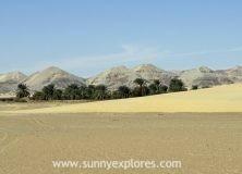 Exploring Kharga Oasis in Egypt's Western Desert