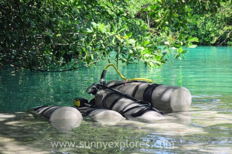Diving the cenotes in Yucatán Mexico: Casa Cenote