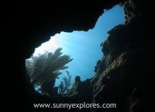 Diving in Mexico: Tulum Reef dives