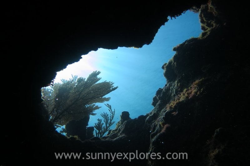 Diving in Mexico: Tulúm Reef dives